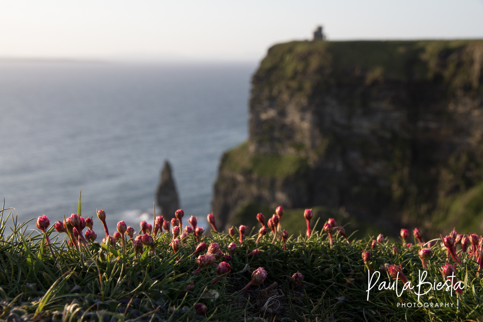 Cliffs of Moher - Ierland - Mei 2016