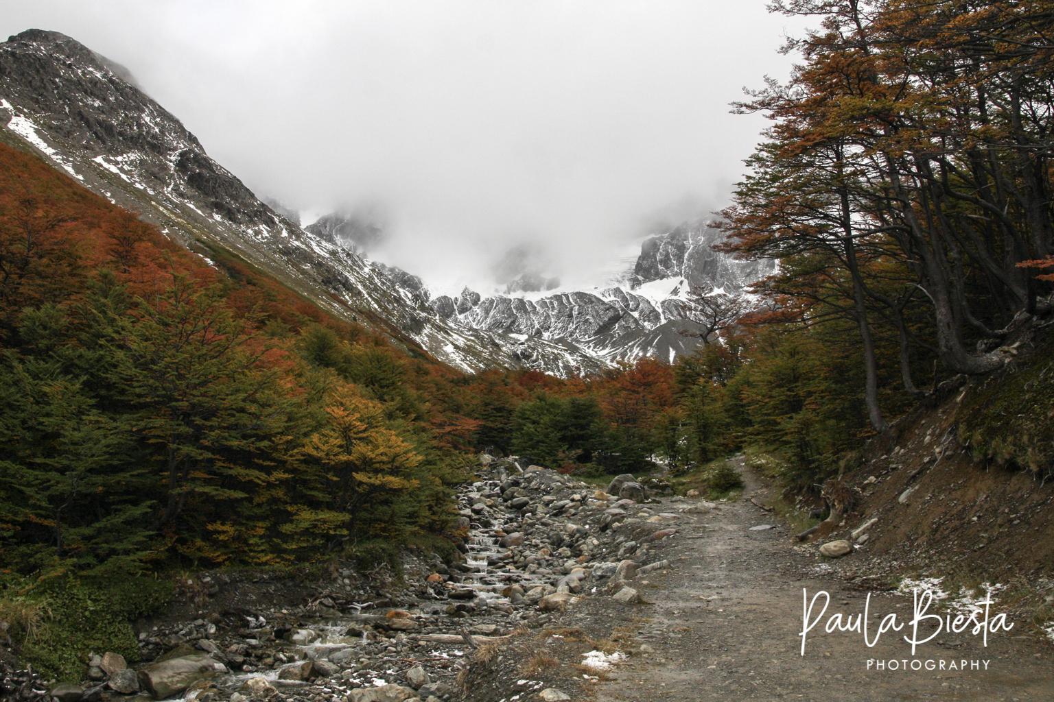 Tierra del Fuego - Argentinië - Maart 2009
