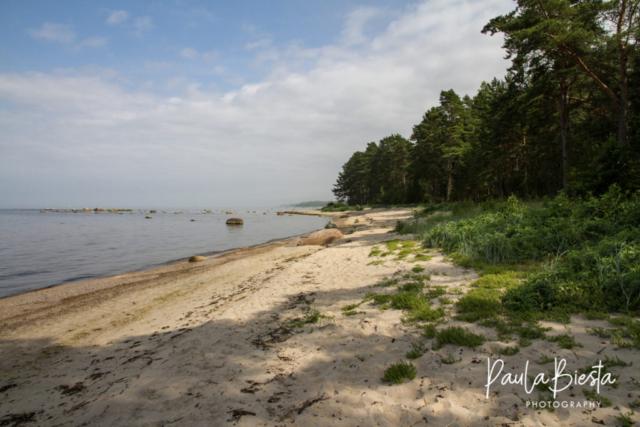 Cape Kolka - Letland - Juli 2016