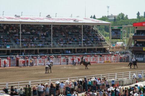 De wereld van de cowboys op de Calgary Stampede