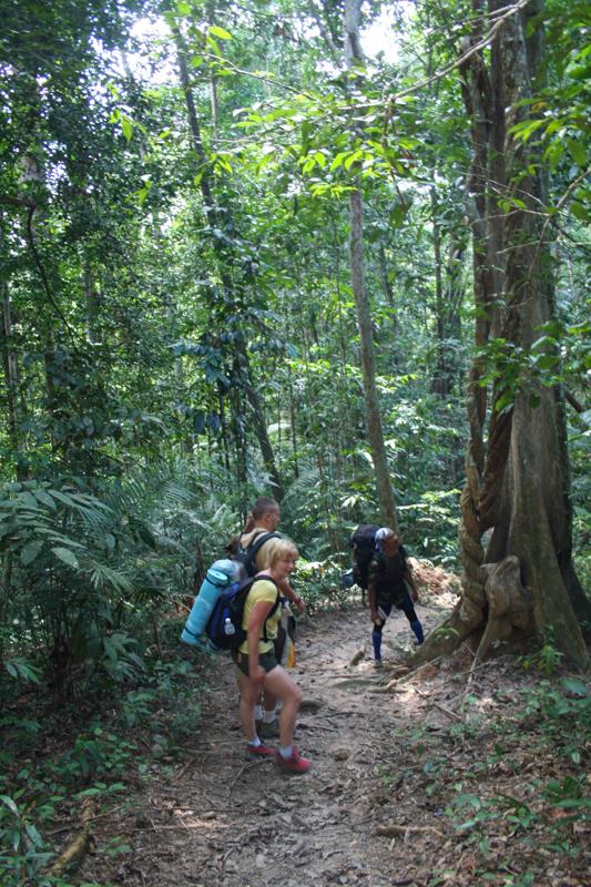 Slapen in de jungle van Taman Negara